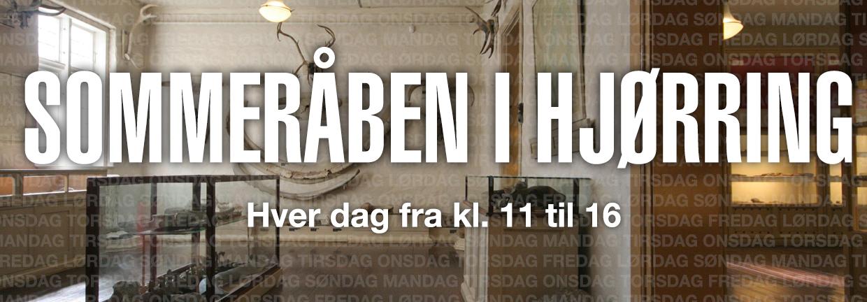 Slider-1240x500-08-Sommeråben-i-Hjørring