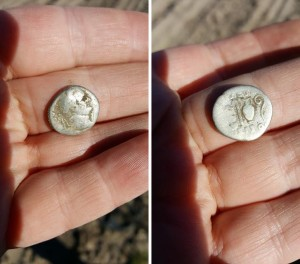 Den romerske denar fra jernalderbopladsen. Det er en denar fra kejser Vespasian, 69-79 e.Kr. Netop denne denar er en meget sjælden type. Den er udmøntet i meget kort tid, mellem juli og december 71 e.Kr. fra mønten, i Juno Moneta-templet på Capitol-højen, i Rom. Foto Nanna Stahlschmidt.