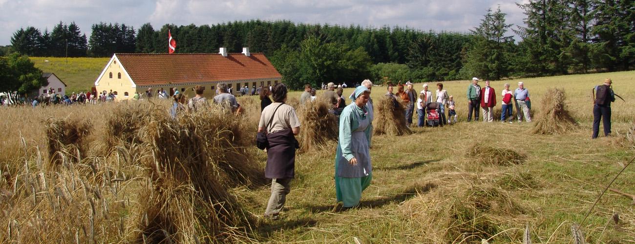 VHM Landskabs og landbrugsmuseet