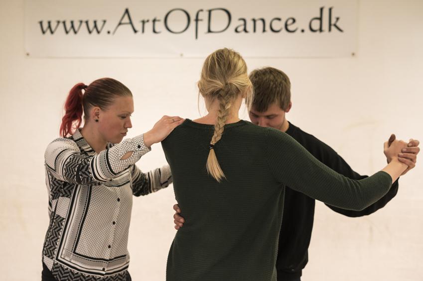 Art of Dance - Bryllup i Vendsyssel - Vendsyssel Historiske Museum - COVER