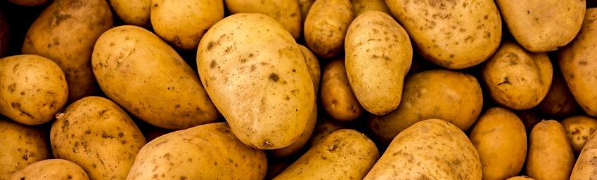 32 - Kartoffelopskrifter b